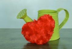 Regadera verde con el corazón rojo de la felpa Foto de archivo libre de regalías