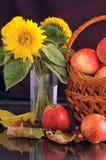 Regali dell'autunno Immagine Stock