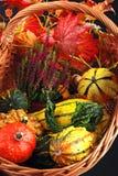 regali di autunno Immagini Stock