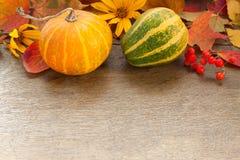 Regali di autunno Immagine Stock Libera da Diritti