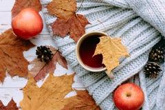 regali di autunno - foglie, mele e tè caldo fotografia stock libera da diritti