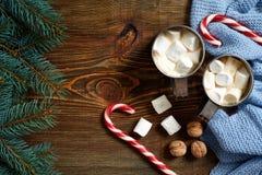Regali di Natale con due tazze di cappuccino, dei dadi, dei coni e del ramo dell'abete sulla fine di legno del fondo su Immagini Stock Libere da Diritti