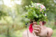 Regali freschi deliziosi della natura Fotografia Stock Libera da Diritti