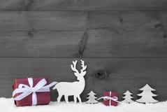 Regalo in bianco e nero di rosso della neve del fondo di Natale Immagini Stock Libere da Diritti