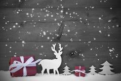 Regalo blanco y negro del rojo de los copos de nieve de la tarjeta de Navidad Imagen de archivo