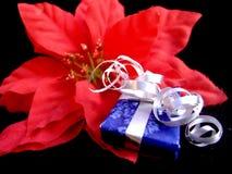 Regalo de la flor de la Navidad foto de archivo libre de regalías