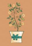 Regalo de la flor en un pote Fotografía de archivo