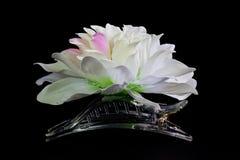 Regalo de la flor para la señora. Fotos de archivo libres de regalías