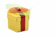 Regalo de la Navidad Imagen de archivo libre de regalías