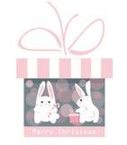 Regalo de la Navidad y conejos divertidos Fotos de archivo libres de regalías