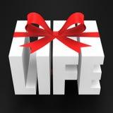 Regalo de la vida Fotos de archivo libres de regalías