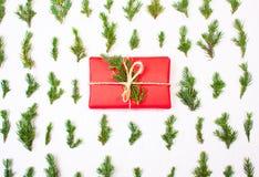 Regalo de Navidad en hojas del árbol Imagenes de archivo