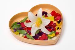 Regalo del cuore con i petali del fiore Immagini Stock