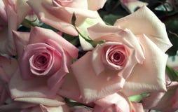 Regalo del día de tarjeta del día de San Valentín Fotos de archivo