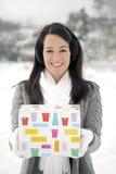 Regalo del invierno fotos de archivo libres de regalías
