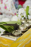 Regalo del sirih de Tepak para la boda del malay Fotos de archivo