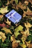 Regalo dell'autunno Fotografia Stock Libera da Diritti