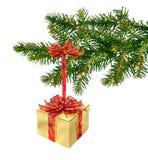 Regalo di Natale sulla filiale Fotografia Stock Libera da Diritti