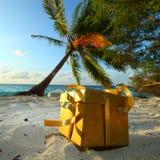 Regalo dorato sulla spiaggia dell'oceano Immagini Stock