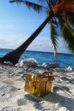 Regalo dorato sulla spiaggia dell'oceano Immagine Stock