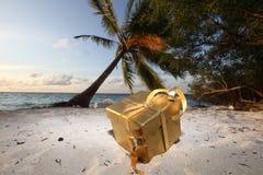 Regalo dorato sulla spiaggia dell'oceano Fotografia Stock Libera da Diritti