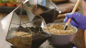 Regalo hecho a mano creativo del Día de la Tierra del florarium de Diy