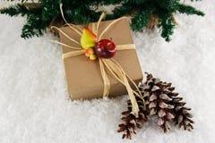 Regalo natural con la decoración de la fruta Fotos de archivo libres de regalías