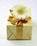 Regalo para usted Imágenes de archivo libres de regalías