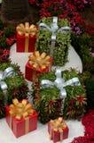 Regalos de gran tamaño de la Navidad con las cintas algunos envueltos en plantas verdes Fotos de archivo libres de regalías