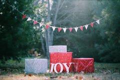 Regalos de la Navidad de la alegría Imagen de archivo libre de regalías
