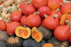 Regalos del otoño imagen de archivo libre de regalías