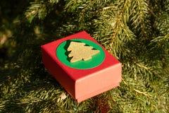 Regalos misteriosos en una caja de regalo en las ramas del árbol de navidad la víspera del día de la Navidad y de tarjeta del día foto de archivo libre de regalías