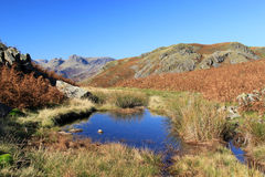 Regard aux brochets de Langdale de Loughrigg. Photos stock