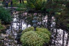 Regard dans l'étang stagnant d'un pont images stock