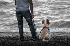 Regard de la mer avec le meilleur ami Photo stock