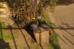 Regard du bois de miroir de l'eau d'inclinaison Été heat verdure Herbe photographie stock