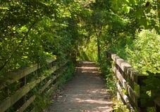 Regard en bas d'un chemin en bois dans les bois pendant l'été Images stock
