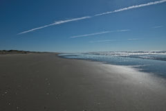 Regard en bas de la plage plate avec la volée des oiseaux Photographie stock libre de droits