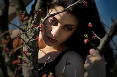 Regard imaginaire d'un bourgeon de fille sur un arbre photos libres de droits