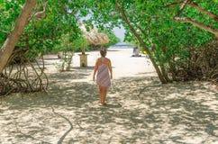 Regard par les arbres de palétuvier en plage d'Aruba Photo libre de droits