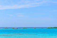 Regard par les arbres de palétuvier en plage d'Aruba Image libre de droits
