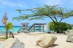 Regard par les arbres de palétuvier en plage d'Aruba Photographie stock