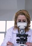 Regard par un microscope photographie stock libre de droits