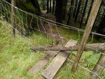 Regard sur le montant au-dessus de la barrière venant voie par des bois image libre de droits
