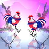Regard tricolore de deux coqs de poulet à l'un l'autre illustration stock
