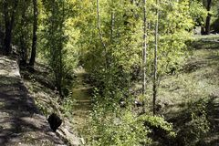 Regard vers le bas sur la rivière Images libres de droits