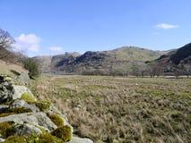 Regardant au-dessus des champs aux brochets d'Angletarn, secteur de lac Photographie stock libre de droits