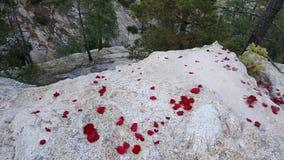 Regarder au-dessus fixement d'une falaise Image libre de droits