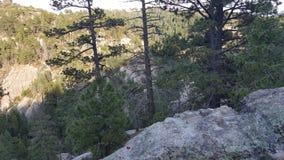 Regarder au-dessus fixement d'une falaise Images stock