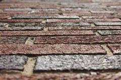 Regarder des briques Photos libres de droits